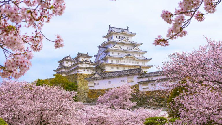 เส้นเวลาของโอกาสในญี่ปุ่น